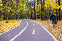 Bike path in the autumn forest Royalty Free Stock Photos