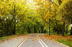 Bike path in autumn Park Royalty Free Stock Photography