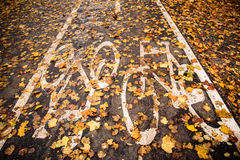 Bike path in the autumn. Piece of bike path in the park in autumn with yellow leaves on it Stock Image