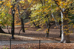 Bike path among autumn trees on Central Park, New York. Photo shot from inside Central Park in New York Royalty Free Stock Photos