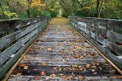 Bike Path Bridge. Autumn Colors And A Bike Path Bridge On The Little Miami Scenic River Trail, Southwestern Ohio Stock Photo