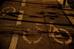 Bike path at night Stock Photo