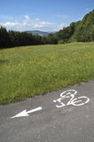 Bike Path on Rural Road. High angle view of a bike path marked with paint on a rural road next to a green meadow with trees and hills in the background. Vertical Royalty Free Stock Photography