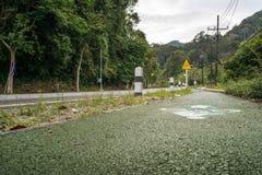 Bike Path to Ruksavarin Public Park Stock Photography
