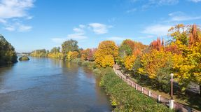 Bike Path by the Willamette. The Willamette River flows beside a bike path in Eugene, Oregon stock images
