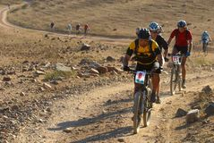 Bike race in desert Stock Photography