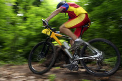 Bike racer. Photo of a mtb racer Royalty Free Stock Photo