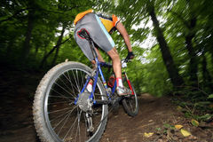 Bike racer royalty free stock images