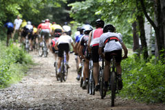 Bike racers. Photo of a mtb racer Stock Images
