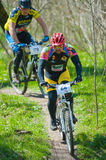 Bike racers Royalty Free Stock Photography