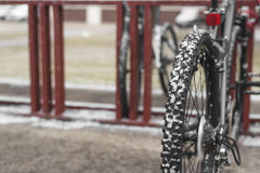 Bike on rack with snow on wheels Royalty Free Stock Photos