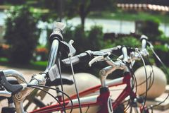 Bike rental. Photo of three bicycles on the bike rental. Close up photo of  bicycle wheels Stock Images