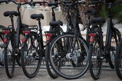 Bike rental service. Stock Photos