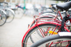 Bike rental service - Many bikes standing in bike stands Royalty Free Stock Images