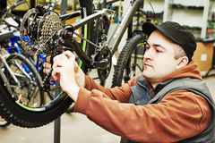 Bike repair or adjustment Stock Photos
