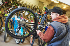 Bike repair or adjustment Royalty Free Stock Images