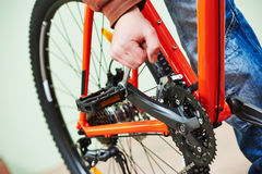 Bike repair or adjustment Stock Image