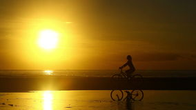 Bike Ride at Sunrise stock video footage