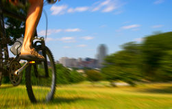 Bike rider Royalty Free Stock Photo