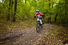 Bike riders at downhill competition. Stock Images