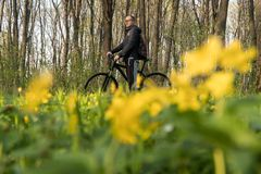 Bike riding - woman on bike, healthy lifestyle concept. Bike ride in the forest among flowers royalty free stock image