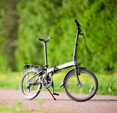 Bike on the road. In the park Stock Images