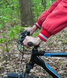 Bike on road in forest royalty free stock images