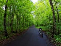 Bike on road through green forest. Bike on scenic road through green forest Royalty Free Stock Photography