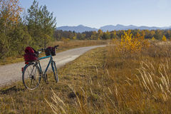 Bike route through isar floodplain, autumnal grassland and fores Stock Photo