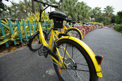 Bike sharing in china Royalty Free Stock Photography