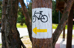 Bike sign. Bicycle sign painted on the tree Royalty Free Stock Photos