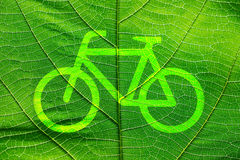 Bike sign on close up green leaf texture Royalty Free Stock Images