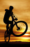 Bike silhouette popping up front tire. A man on a bike is silhouetted with the front tire popped up royalty free stock photo