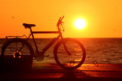 Bike silhouette at the sunset. Near the sea royalty free stock photography