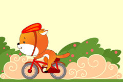 On bike. Small cute animal rides a bicycle, quickly and purposefully Royalty Free Stock Photo