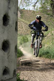 Bike speed. Racing mountain bike zooming off a small jump stock image