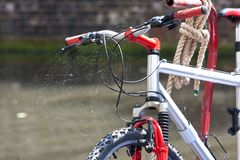 Bike and The Spider Web royalty free stock photos