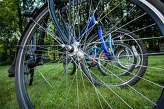 Bike spokes Royalty Free Stock Image