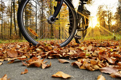 Bike standing on the bike path. Stock Images