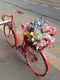 Bike on the street. With flowers Royalty Free Stock Images
