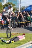 Bike stunts in the park. A rider does a wheelie over a volunteer royalty free stock photos