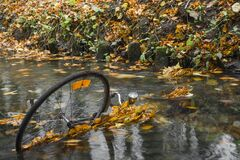 Bike thrown into the river