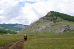 Bike Touring in Northern Mongolia Mountains. A man rides his touring bicycle through the remote mountains of northern Mongolia just outside Khovsgol Lake royalty free stock images