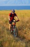 Bike tourist on yellow field Stock Image