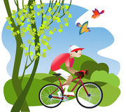 Bike tours. A boy rides a bicycle on a footpath through the fields Royalty Free Stock Photos