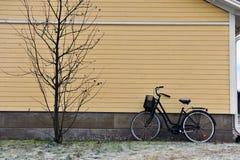 Bike and tree Stock Photo