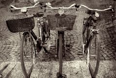 Bike Trio in Italy Stock Photo