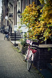 Bike with tulips. Bike's standing on the pavement, leaning to porch Royalty Free Stock Photography