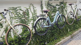 Bike. Wall cycle art cycle Stock Photos