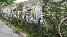 Bike. Wall cycle art cycle Stock Photography